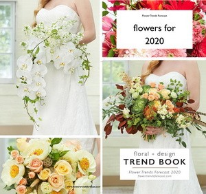 Top Flowers for 2020 Revealed