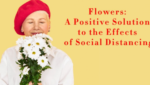 FLOWERS: A POSITIVE SOLUTION TO THE EFFECTS OF SOCIAL DISTANCING