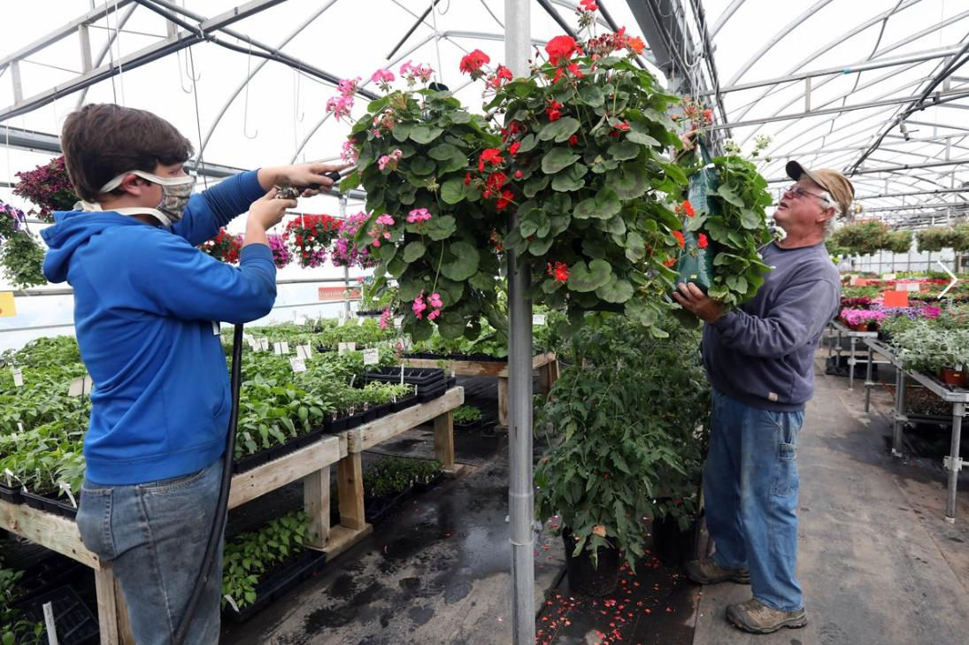 Flower sales go to a good cause, even after birding fest canceled